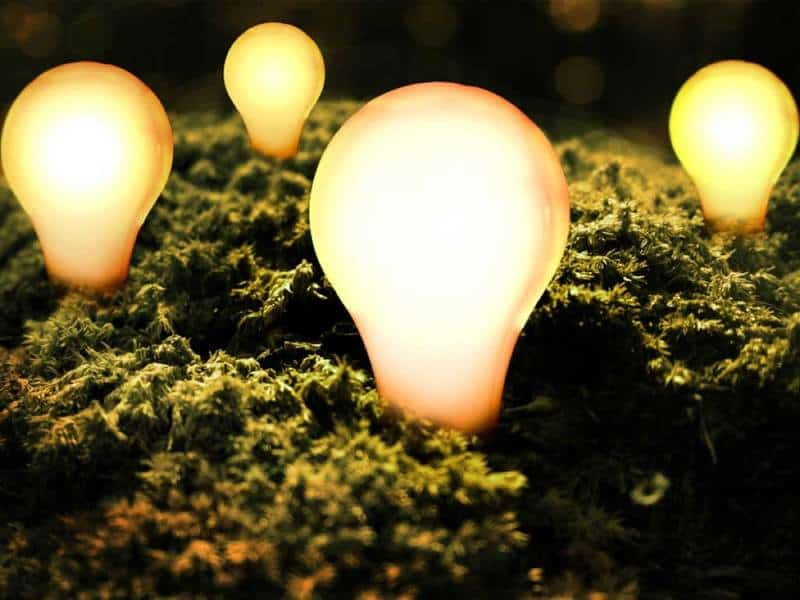 Lampen, Leuchten & Kronleuchter