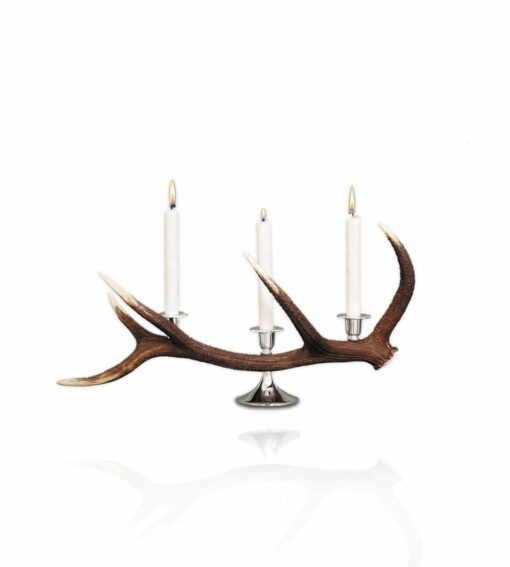 Kerzenständer Cervus 3-flammig aus Hirschgeweih
