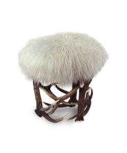 Fellhocker Sheep